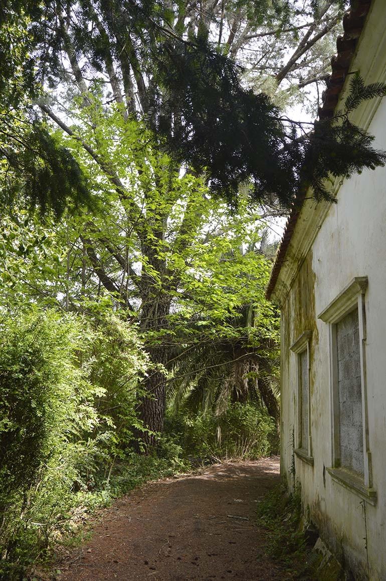 Antigas minas da Portucel