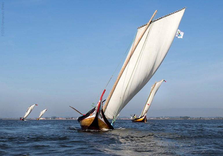 Barco moliceiro | Ria de Aveiro